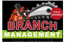 Branch Management